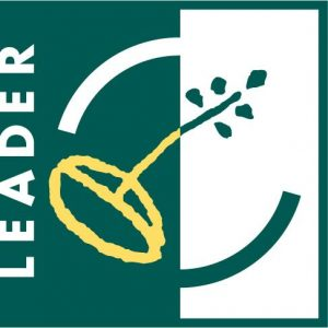 6. logo LEADER_preview